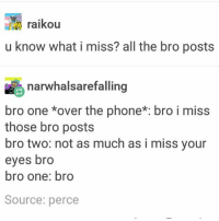 NO MORE SCHOOL FOR LIKE 2 WEEKS HECK YES ~Ray: raikou  ralkou  u know what i miss? all the bro posts  narwhalsarefalling  bro one *over the phone*: bro i miss  those bro posts  bro two: not as much as i miss your  eyes bro  bro one: bro  Source: perce NO MORE SCHOOL FOR LIKE 2 WEEKS HECK YES ~Ray