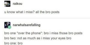 Bro: raikou  u know what i miss? all the bro posts  narwhalsarefalling  bro one over the phone*: bro i miss those bro posts  bro two: not as much as i miss your eyes bro  bro one: bro  k. Bro
