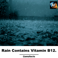 Rain: Rain Contains Vitamin B12.  @amzfacts