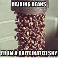 Memes, 🤖, and Website: RAINING BEANS  FROM A CAFFEINATED SKY  METALMEMECOM Thanks @kcs.thrash.87 for posting this on my website