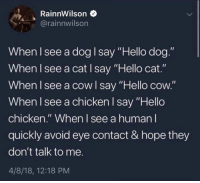 "Hello, Chicken, and Hope: RainnWilson  @rainnwilson  When I see a dog I say ""Hello dog.""  When I see a cat I say ""Hello cat.""  When I see a cow l say ""Hello cow.""  When I see a chicken I say ""Hello  chicken."" When l see a human I  quickly avoid eye contact & hope they  don't talk to me.  4/8/18, 12:18 PM  ello coOW"