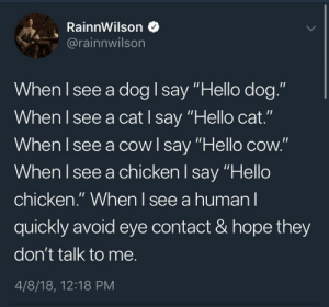 """Dank, Hello, and Memes: RainnWilson  @rainnwilson  When I see a dog I say """"Hello dog.""""  When I see a cat I say """"Hello cat.""""  When I see a cowl say """"Hello cow.""""  When I see a chicken I say """"Hello  chicken."""" When I see a human l  quickly avoid eye contact & hope they  don't talk to me.  4/8/18, 12:18 PM meirl by clairemt11 FOLLOW 4 MORE MEMES."""
