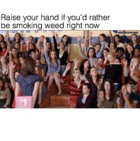 Meeeee 🙋🏻♂️ @wolfiememes: Raise your hand if you'd rather  be smoking weed right now  wolfiememes Meeeee 🙋🏻♂️ @wolfiememes