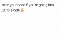 Funny, Lol, and Single: raise your hand if you're going into  2019 single Find a soul mate in the comments lol