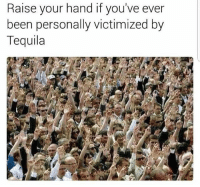 Years of abuse.: Raise your hand if you've ever  been personally victimized by  Tequila Years of abuse.