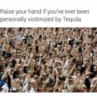 Happy national tequila recovery day: Raise your hand if you've ever been  personally victimized by Tequila Happy national tequila recovery day