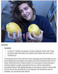 Anthony Hopkins, Apparently, and Memes: rakatakat.  rakatakat  LOOK AT THESE COLOSSAL FUCKIN LEMONS FROM THE TREE  MY BROTHER HAS PEED ON EVERY DAY SINCE HE WAS LIKE 5  YEARS OLD  im laughing/crying i dont want any more messages about this listen up you  fucks apparently pee makes Citrus plants grow well he learned this from a  movie called the world's fastest indian it is a very good movie starring Sir  anthony hopkins a highly inspirational film you will be compelled to  purchase a lemon tree sapling and see a man about a dog on it every day  for the rest of your life and you will be blessed with lemons the size of  footballs. yes we ate the pee lemons. Who wouldn't eat thos lemons-aj •.•.•.•.•.•.•.•.•.•.•.•.•.•.•.•.•.•.•.•.•.•.•.•.•.•.•.•.•.•.•.. tumblrtextpost tumblrposts textpost tumblr shrek instatumblr memes posts phan funnythings 😂 same funny haha loltumblr lol relatable rarepepe funnythings funnytextposts pepeislife meme funnystuff pepe food spam