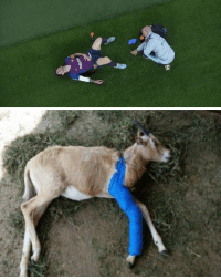 Football, Soccer, and What: Rakuter What normal people see vs what football fans see 🐐 https://t.co/s4IH447vX5