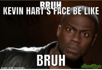 kevin hart face: RaL  KEVIN HART'S FACE BE LIKE  BRUH  made with mematic