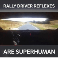 That's one lucky sheep! 😲 📹:Cameron Davies: RALLY DRIVER REFLEXES  ARE SUPERHUMAN That's one lucky sheep! 😲 📹:Cameron Davies