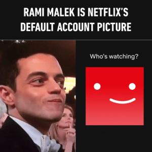 I can't unsee this now: RAMI MALEK IS NETFLIX'S  DEFAULT ACCOUNT PICTURE  Who's watching? I can't unsee this now