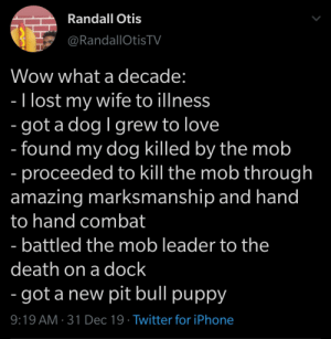 Here's to the next decade 🥂: Randall Otis  @RandallOtisTV  Wow what a decade:  - I lost my wife to illness  - got a dog I grew to love  - found my dog killed by the mob  - proceeded to kill the mob through  amazing marksmanship and hand  to hand combat  - battled the mob leader to the  death on a dock  - got a new pit bull puppy  9:19 AM · 31 Dec 19 · Twitter for iPhone Here's to the next decade 🥂