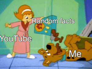 Always happens when trying to do other stuff: Random facts  YouTube  Ме Always happens when trying to do other stuff