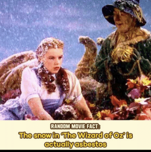 We're off to see the asbestos removal professional of oz!: RANDOM MOVIE FACT  The snow in The Wizard of Oz' is  actually asbestos We're off to see the asbestos removal professional of oz!
