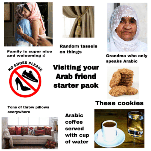 Cookies, Family, and Grandma: Random tassels  on things  Family is super nice  and welcoming :)  Grandma who only  speaks Arabic  NO SHOES PLEASE  Visiting your  Arab friend  starter pack  These cookies  Tons of throw pillows  everywhere  Arabic  coffee  served  with cup  of water Going to visit your Arab friend starter pack