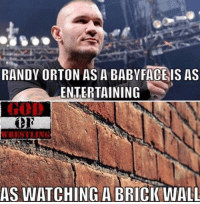 Not hating on Orton in anyway I respect him but his babyface run has been weak imo he's always better as a heel prowrestling professionalwrestling wwe wweraw wwenxt wwesuperstars wweuniverse wweuniversalchampionship wwenetwork wwenews wwefunny wwefans wwepayback wwenetwork wwenews wwememes ajstyles randyorton rko braywyatt braunstrowman jindermahal wrestlingmemes wrestling wrestler wrestlers wrestle worldwrestlingfederation worldwrestlingentertainment: RANDY ORTON AS A BABY FACE IS AS  ENTERTAINING  WRESTLING  AS WATCHING A BRICK WALL Not hating on Orton in anyway I respect him but his babyface run has been weak imo he's always better as a heel prowrestling professionalwrestling wwe wweraw wwenxt wwesuperstars wweuniverse wweuniversalchampionship wwenetwork wwenews wwefunny wwefans wwepayback wwenetwork wwenews wwememes ajstyles randyorton rko braywyatt braunstrowman jindermahal wrestlingmemes wrestling wrestler wrestlers wrestle worldwrestlingfederation worldwrestlingentertainment