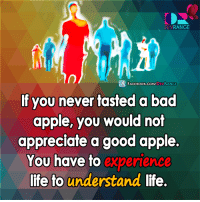 Apple, Memes, and Appl: RANGE  DEV  f FACE DEVRANGE  If you never tasted a bad  apple, you would not  appreciate a good apple.  You have to experience  life to understand life. #Experience #Understand