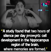 """Memes, 🤖, and Hippocampus: RANGE  f DEVRANGE  """"A study found that two hours of  silence per day prompts cell  development in the hippocampus  region of the brain,  where memories are formed."""" #Silence #DevRange"""
