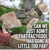War Cat has seen some things man.  And done some stuff.    RangerUp.com: RANGER  UP  BROOKS  CAN WE  JUST ADMIT  THAT TACTICOOL  HAS GONE A  LITTLE TOO FAR? War Cat has seen some things man.  And done some stuff.    RangerUp.com