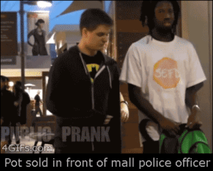 God, Police, and Tumblr: RANK 1  Pot sold in front of mall police officer krissi2197: awesomephilia:  The officer thought he had an arrest but it didn't pan out  GOD DAMNIT