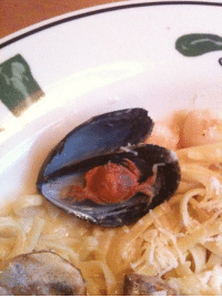"Dude, Olive Garden, and Tumblr: ranty9000:  sneakyfeets:  andrewthepoet:  One time I went on a date to the Olive Garden and I ordered the seafood pasta. I open up one of the muscle oyster things and low and behold there is a tiny crab in there. I freak out and think it's the craziest thing ever. I keep talking to my then girlfriend about this tiny crab. How hilariously wonderful it is that the little dude crawled in there in the ocean only to become a freaky little part of my pasta. She is very unamused and clearly wants me to shut the hell up about this tiny crab and be a normal person. She is 0% excited about the tiny crab.  The waitress comes over eventually and is like 'hey how's the meal?' and I'm like 'awesome, but you gotta check this out! i found a tiny crab in here!' and waitress freaks out and thinks its awesome. And she is like 'can I take this to show everyone else?' and I'm all like 'hells yeah.' So she does and everyone else that works there thinks it's awesome. Girlfriend SUPER annoyed. The End.  dump her   it says ""my then girlfriend"" they did already"