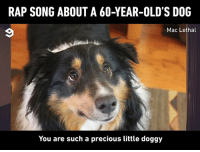 Dank, Precious, and Rap: RAP SONG ABOUT A 60-YEAR-OLD'S DOG  Mac Lethal  You are such a precious little doggy Who is cutting onions?  By Mac Lethal