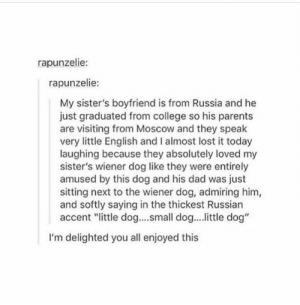 """College, Dad, and Parents: rapunzelie:  rapunzelie:  My sister's boyfriend is from Russia and he  just graduated from college so his parents  are visiting from Moscow and they speak  very little English and I almost lost it today  laughing because they absolutely loved my  sister's wiener dog like they were entirely  amused by this dog and his dad was just  sitting next to the wiener dog, admiring him,  and softly saying in the thickest Russian  accent """"ittle dog....small dog... ittle dog'""""  I'm delighted you all enjoyed this Smol Dog"""