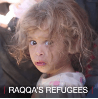 Memes, Capital, and Syria: RAQQA'S REFUGEES 12 JUL: The battle against so-called Islamic State has turned to the city of Raqqa, known as the 'capital' of IS in Syria. People are fleeing to escape, but many do not know where to go. Syria War Refugees BBCShorts BBCNews @BBCNews