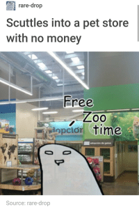 Money, Free, and Time: rare-drop  Scuttles into a pet store  with no money  Free  opcior time  Source: rare-drop meirl