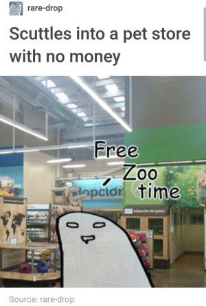 Dank, Memes, and Money: rare-drop  Scuttles into a pet store  with no money  Free  opcior time  Source: rare-drop meirl by VarysIsAMermaid69 MORE MEMES