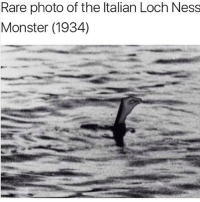 I always show Italian memes to the Italian exchange student in one of my classes: Rare photo of the Italian Loch Ness  Monster (1934) I always show Italian memes to the Italian exchange student in one of my classes