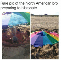 "American, Couch, and Http: Rare pic of the North American bro  preparing to hibronate  @the.couch.whisperer <p>Hi&quot;bro&quot;nation via /r/wholesomememes <a href=""http://ift.tt/2xGRbTP"">http://ift.tt/2xGRbTP</a></p>"