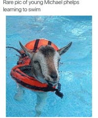 Michael Phelps = GOAT 🐐🐐🐐 - Follow (@savagecomedy) For More! 😂: Rare pic of young Michael phelps  learning to swim Michael Phelps = GOAT 🐐🐐🐐 - Follow (@savagecomedy) For More! 😂