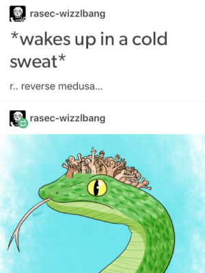 Cursed: rasec-wizzlbang  *wakes up in a cold  sweat*  r.. reverse medusa.  rasec-wizzlbang Cursed
