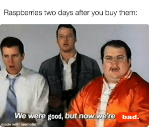 Bad, Good, and Them: Raspberries two days after you buy them:  We were good, but now we're bad.  made with mematic They get Moldy so quick