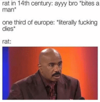 """Fucking, Memes, and Europe: rat in 14th century: ayyy bro *bites a  man*  one third of europe: """"literally fucking  dies*  rat: Small things can make a difference via /r/memes https://ift.tt/2G7bQ9L"""