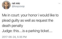 me_irl: rat mic  @loopzoop  Me in court: your honor i would like to  plead guilty as well as request the  death penalty  Judge: thi...is a parking ticket...  2017-06-24, 5:35 PM me_irl