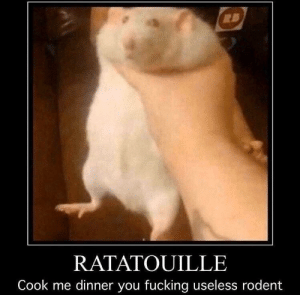 Fucking, Reddit, and Ratatouille: RATATOUILLE  Cook me dinner you fucking useless rodent I require cheese (touch) sustenance.