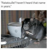 """Heardly: Ratatouille? haven't heard that name  in years."""""""