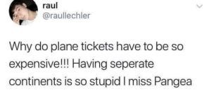 The good old days: raul  @raullechler  Why do plane tickets have to be  expensive!!! Having seperate  continents is so stupid I miss Pangea The good old days