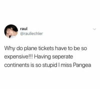 Memes, Plane Tickets, and 🤖: raul  @raullechler  Why do plane tickets have to be so  expensive!! Having seperate  continents is so stupid I miss Pangea