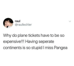 Gosh we miss it: raul  @raullechler  Why do plane tickets have to be So  expensive!!! Having seperate  continents is so stupid I miss Pangea Gosh we miss it