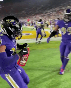 Ravens players stole food & beer from Rams fans sitting in the front row after an interception 😂 (@HeartofNFL) https://t.co/6qs3ujT3nJ: Ravens players stole food & beer from Rams fans sitting in the front row after an interception 😂 (@HeartofNFL) https://t.co/6qs3ujT3nJ