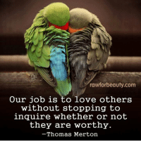 """rawforbeauty.com  Our job is to love others  without stopping to  inquire whether or not  they are worthy  -Thomas Merton """"Our job is to love others without stopping to inquire whether or not they are worthy."""" - Thomas Merton www.rawforbeauty.com"""