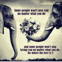 Memes, What You Doing, and 🤖: rawforbeauty.com  Some people won't love you  no matter what you do  and some people won't stop  loving you no matter What you do.  Go Where the love is