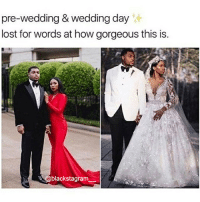 Family, Memes, and Royal Family: re-wedding & wedding da  lost for words at how gorgeous this is.  @blackstagram Iconic. Check out the groom. BlackLove @__royal__family__ blackexcellence blackpride blackandproud blackpower blackfamily blackfathers blackfathersmatter blackmomsblog blackmothers blacklove blackbeauty blackisbeautiful blackgirlmagic blackgirlsrock naturallyshesdope blackgirl blackgirls blackwomen blackwoman blackout blackqueens blackmodel blackmodels blackgirlskillingit melaninonfleek melaninpoppin