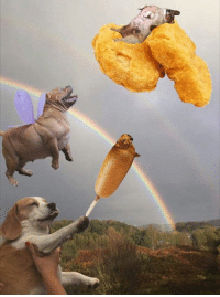 Reach for the nugs (Remastered): Reach for the nugs (Remastered)