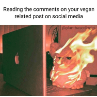 Reading the comments on your vegan  related post on social media  @plant basedlogic I'll just post one thing on social media annnnnnnnd now everyone hates me!