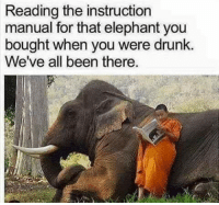 Drunk, Lol, and Elephant: Reading the instruction  manual for that elephant you  bought when you were drunk.  We've all been there. Can't say I have...
