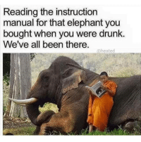 So relatable 😭 heated yyc relateable af cocaine: Reading the instruction  manual for that elephant you  bought when you were drunk.  We've all been there  a heated So relatable 😭 heated yyc relateable af cocaine